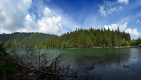 Black Lake Royalty Free Stock Photo