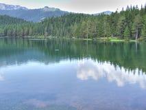 Black lake Royalty Free Stock Image