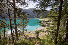 Black Lake , Crno jezero. Durmitor, National Park in Montenegro Royalty Free Stock Images