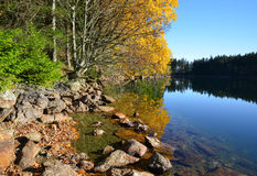 Black Lake - Czech republic Royalty Free Stock Photos