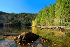 Black Lake, the Largest natural lake in the National park Sumava Royalty Free Stock Photo