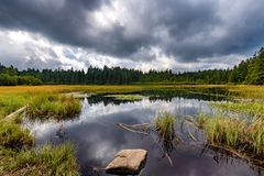 Black lake and marshes, forest in background on Pohorje mountain, Slovenia. Crno jezero is near Rogla ski resort and popular hiking landmark royalty free stock photography