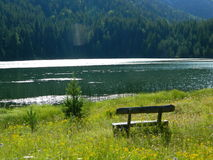 Black lake montenegro royalty free stock photography