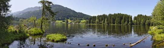 Black lake in a moor area Royalty Free Stock Images