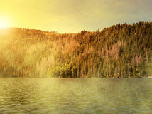 Black Lake in the National park Sumava Stock Photo