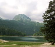 Black Lake. Durmitor National Park Montenegro. Black Lake. A small glacial lake that is located on the Mount Durmitor within the Durmitor National Park in the Royalty Free Stock Photos