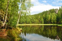 Black lake surrounded by green forest trees stock photos