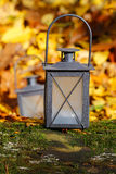 Black lantern in autumn forest Royalty Free Stock Images
