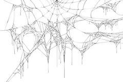 Black large torn spider web on white background vector illustration