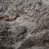 Black lava stock image