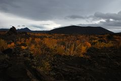 Lava Fields of Iceland. Black lava fields in Iceland forming a dramatic landscape in autumn royalty free stock image