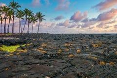 Free Black Lava Fields On The Big Island Of Hawaii. Royalty Free Stock Photo - 191170745