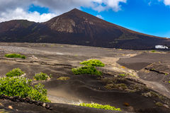 Black lava fields Stock Images