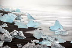 Black lava sand with icebergs from glaciers Royalty Free Stock Photo