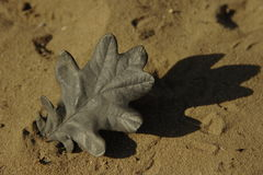 Black Leaf. A black leaf in the sand Royalty Free Stock Photos