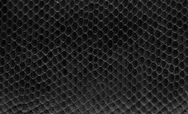 Black leather. Close-up of black leather texture Royalty Free Stock Image