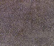 Black leather background or texture Royalty Free Stock Images
