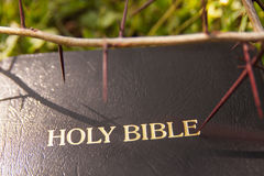 Black leather bible and thorn branch Royalty Free Stock Photo