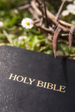 Black leather bible and thorn branch Royalty Free Stock Photography