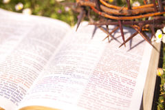Black leather bible and thorn crown on a flower field Royalty Free Stock Photo