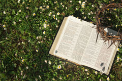 Black leather bible and thorn crown on a flower field Stock Photos