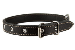 Black leather dog collar Stock Photo