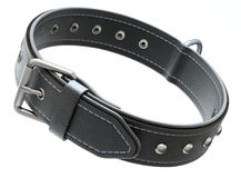 Black leather dog collar Stock Image