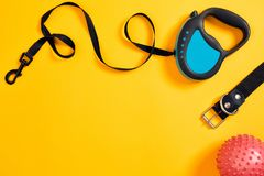 Black leather dog collar, pink ball and blue leash attached on yellow background. Top view Royalty Free Stock Photography