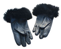 Black leather gloves Stock Image