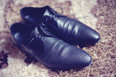 Black leather  shoes. Men's black shoes on carpet Royalty Free Stock Image