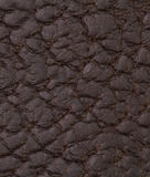 Black leather texture or background. Abstract Black leather texture or and background Stock Photography