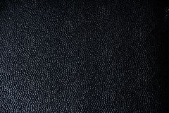 Black leather texture. For various design projects royalty free stock images