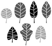 Black Leaves silhouette set. Collection of black Leaves silhouette. Vector set Stock Images