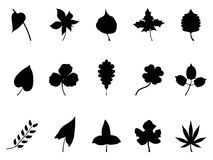 Black leaves Silhouettes set Royalty Free Stock Images