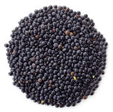 Black lentils Royalty Free Stock Image