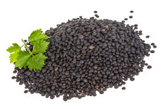 Black lentils Royalty Free Stock Images
