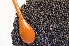 Black lentils and small spoon close up Stock Photography
