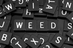 Black letter tiles spelling the word & x22;weed& x22;. On a reflective background stock photo