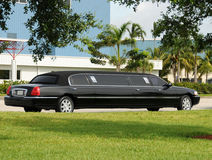 Black limo Stock Photography