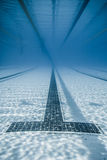 Black Line Starts and Corridor of an Olympic Pool Stock Photo