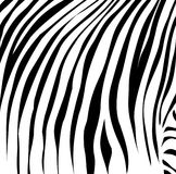 Black lines as at a zebra.Vector illustration Royalty Free Stock Photography