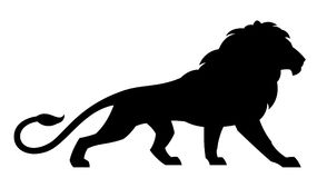 Black lion Royalty Free Stock Photography