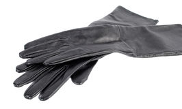 Black  long  woman's gloves Stock Photos