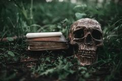 Black magic book with occult symbols and skull. Opened black magic book with occult symbols and human skull on the grass in forest. Exorcism and supernatural stock images