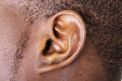 Ear. Black male ear close up Royalty Free Stock Photo