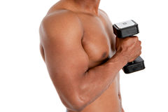 Black Male Model Holding Weights Stock Photography