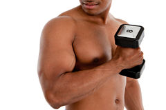 Black Male Model Holding Weights. Black Male Model with Strong Healthy Body Holding Weights on White Background Royalty Free Stock Photo