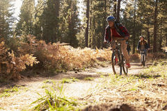 Black man and Caucasian woman riding bikes on a forest trail Stock Images