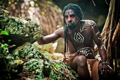 Black man with dreadlocks in the image of the Taino Indian in his habitat. Black man with dreadlocks in the image of the Taino Indian in habitat, body painting Stock Photography