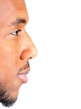 Black man profile. On white stock photography